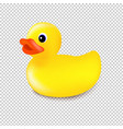 rubber duck isolated transparent background vector image