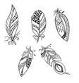 set of five feathers in tribal american ethnic vector image