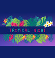 summer night hand drawn tropic background vector image vector image