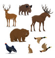 wild forest animal and bird icon hunting sport vector image vector image
