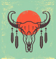 wild skull with feathers vintage poster bull vector image