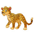 cartoon leopard walking vector image vector image