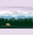 highway drive with beautiful spruce forest vector image vector image