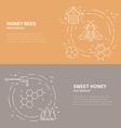 Honey Flyers vector image vector image