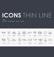 miami thin line icons vector image vector image