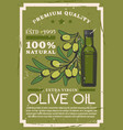 premium quality extra virgin olive oil bottle vector image