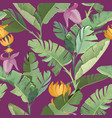 seamless print with green tropical banana palm vector image vector image