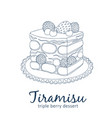 triple berry tiramisu dessert icon cartoon vector image