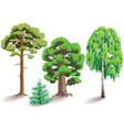 types of trees vector image vector image