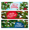 christmas tree and holly with snow xmas banners vector image