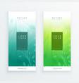 elegant leaves vertical banners set vector image vector image