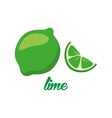 lime fruits poster in cartoon style depicting vector image vector image