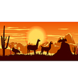 llamas wildlife background vector image