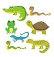 Set of creeping things Wild animals