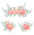 set with peonies leaves eucalyptus vector image