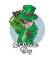 st patrick4 vector image