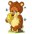 Cute bear cub with honey vector image