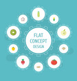 flat icons praties pitaya maize and other vector image vector image