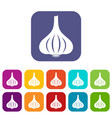 garlic icons set flat vector image vector image
