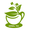 herbal tea eco product logo vector image