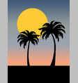 palm trees silhouette with sunset vector image