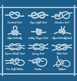 set of rope knots hitches bows bends part 1 3 vector image vector image