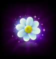 shining white chamomile flower slot icon with vector image vector image