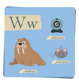 colorful alphabet for kids - letter w vector image