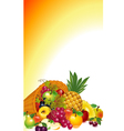 cornucopia with fruit vector image vector image
