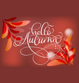hello autumn text and leaves on red background vector image vector image