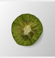 kiwi polygonal kiwi low poly vector image