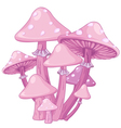 Magic Toadstools vector image vector image