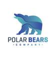 polar bear animal logo vector image vector image