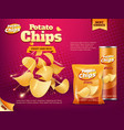 potato chips bag and tube box snack food packages