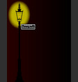 rue bourbon street sign with lamp vector image