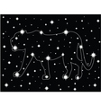 star in the night sky vector image