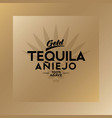 tequila emblem blue agave tequila logo gold vector image