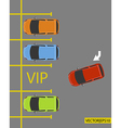 VIP PARKING vector image