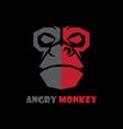 head monkey logo vector image
