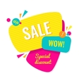 Advertising banner Sale wow Special discount vector image