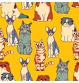 Cats group color seamless pattern vector image vector image