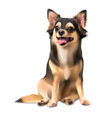 chihuahua on sitting pose vector image vector image