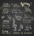set of hand-written chalk spring lettering on vector image vector image