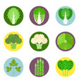 vegetables flat icons set 1 vector image vector image