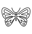 artistic butterfly icon outline style