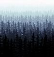 Nature forest landscape pine fir vector image vector image