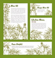 olives and olive oil sketch posters set vector image