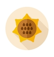 Sunflower flat icon with long shadow vector image
