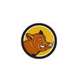 Wild Boar Razorback Head Startled Circle Cartoon vector image vector image