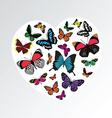 butterfly heart pattern vector image